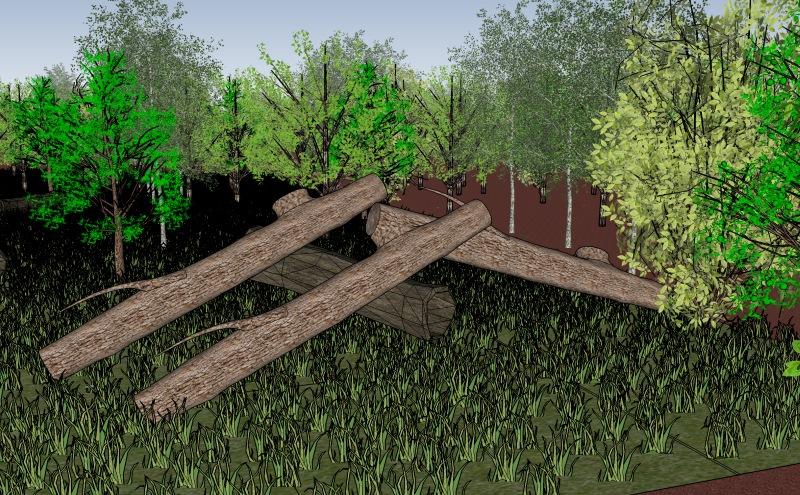 #14 IMMER Bäume im Weg